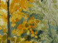 uea-autumn-trees