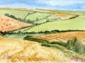 Fields-around-Malborough-S-Devon